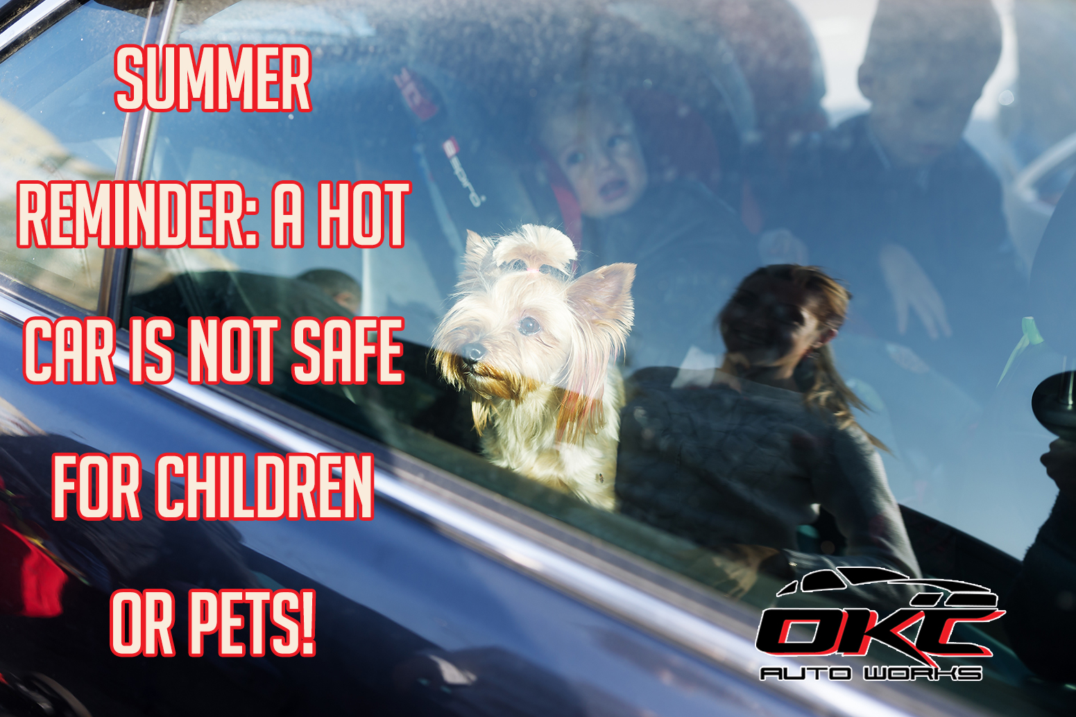 hot cars and children or pets do not mix